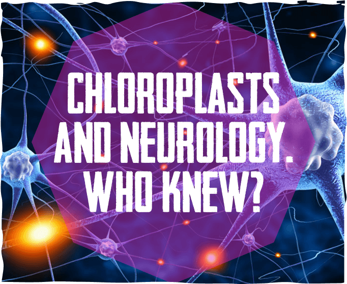 Chloroplasts and Neurology. Who Knew?