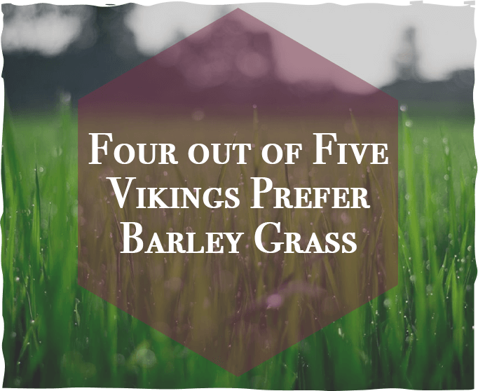 Four Out of Five Vikings Prefer Barley Grass