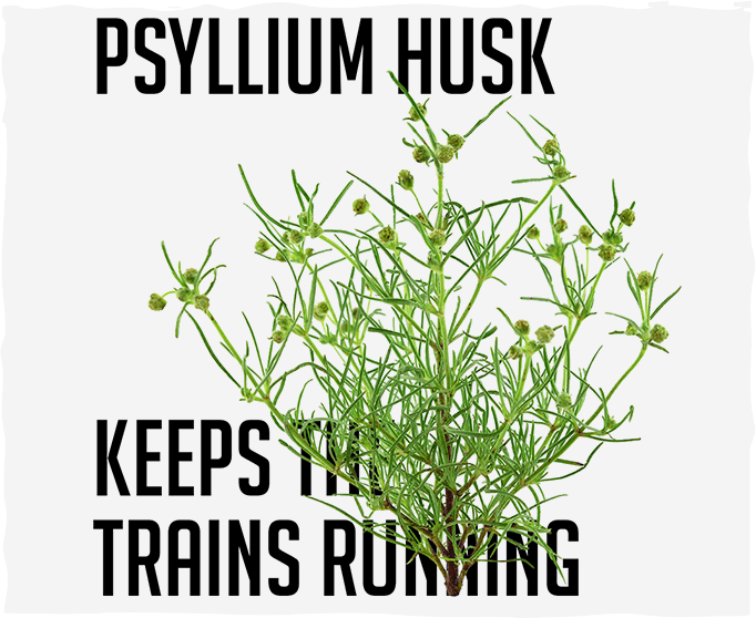 Psyllium Husk Keeps the Trains Running