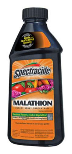 Spectracide HG-60900 Malathion Insect Spray Concentrate, 16 Oz.