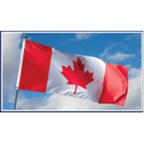 Valley Forge CANULA-1 Poly Canada Flag, 28