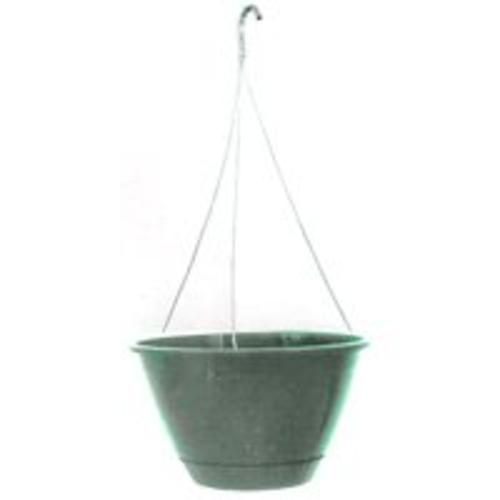 Ames/True Temper EE1025FE Hanging Basket With Hanger, Fern