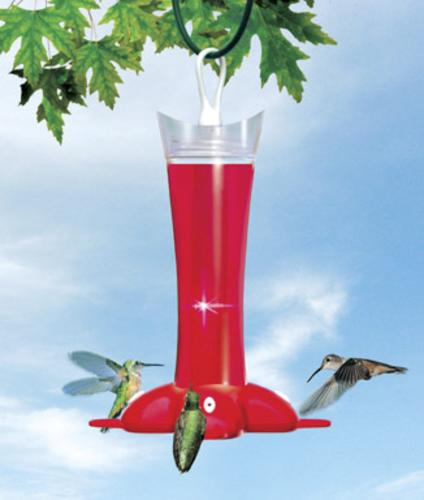 Birdscapes 279 Hummingbird Feeder With Ant Moat 12 Oz
