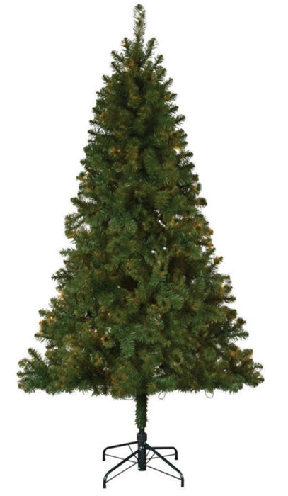 Celebrations TG66EH148X07 Jackson Hinge Artificial Christmas Tree, 6-1/2'