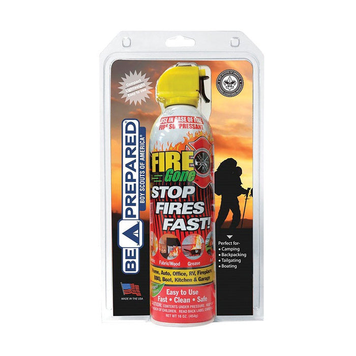 Fire Gone FGBSA-1300 Fire Extinguisher, 16 Oz