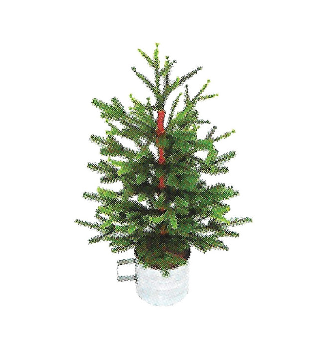Holiday Bright Lights TCSTT2SLPA Artificial Table Top Christmas Tree, 2' H