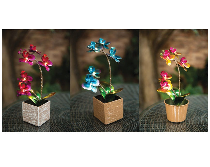 buy solar powered lights at cheap rate in bulk. wholesale & retail lawn & garden maintenance & décor store.