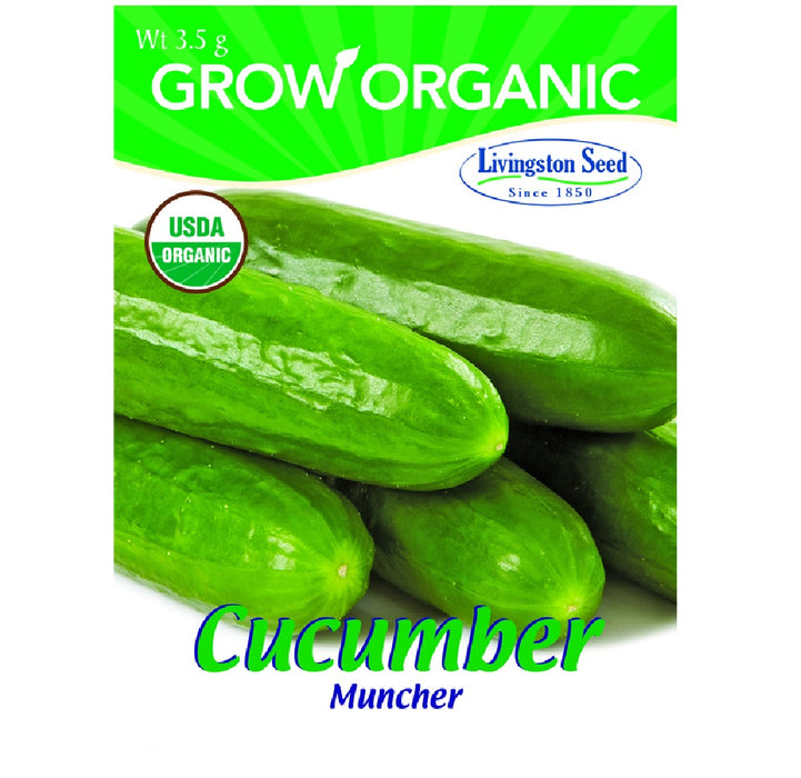 Livingston Seed Y7065 Cucumber Muncher Plantation Products Vegetable, 3.5g