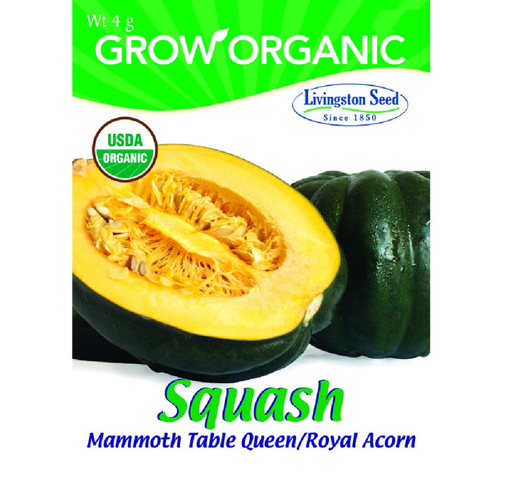 Livingston Seed Y7140 Squash Mammoth Table Queen Plantation Vegetable, 4g