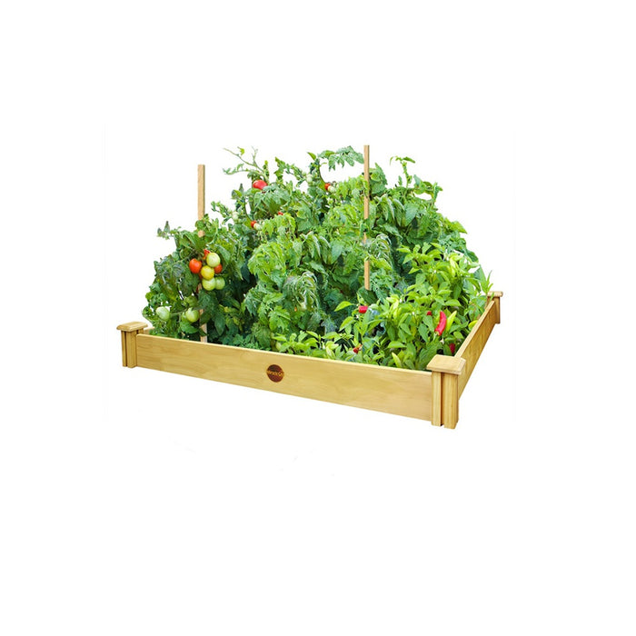 buy raised garden kits at cheap rate in bulk. wholesale & retail farm and gardening supplies store.