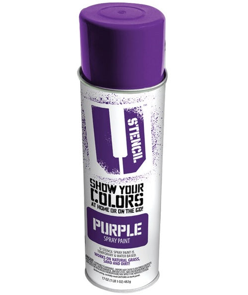 Matte Spray Paint Purple On Sale Painting Tools