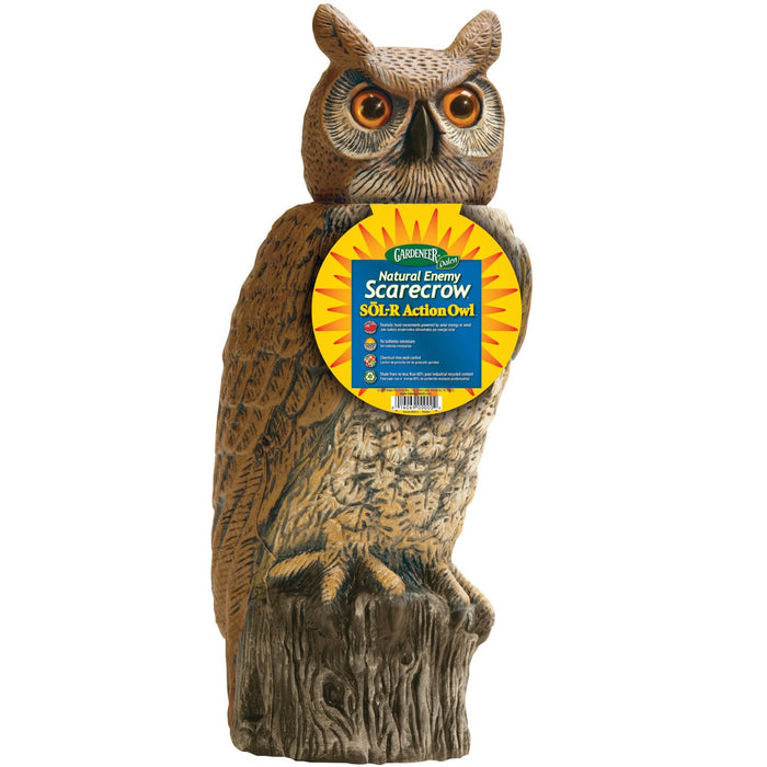 Buy solar action owl - Online store for outdoor & lawn decor, decorative stones & statues in USA, on sale, low price, discount deals, coupon code