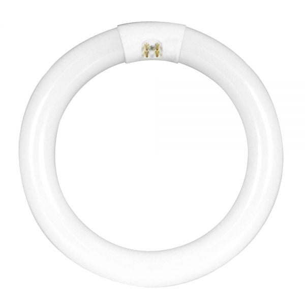 Circular Fluorescent Light Bulb Low Price Lamp