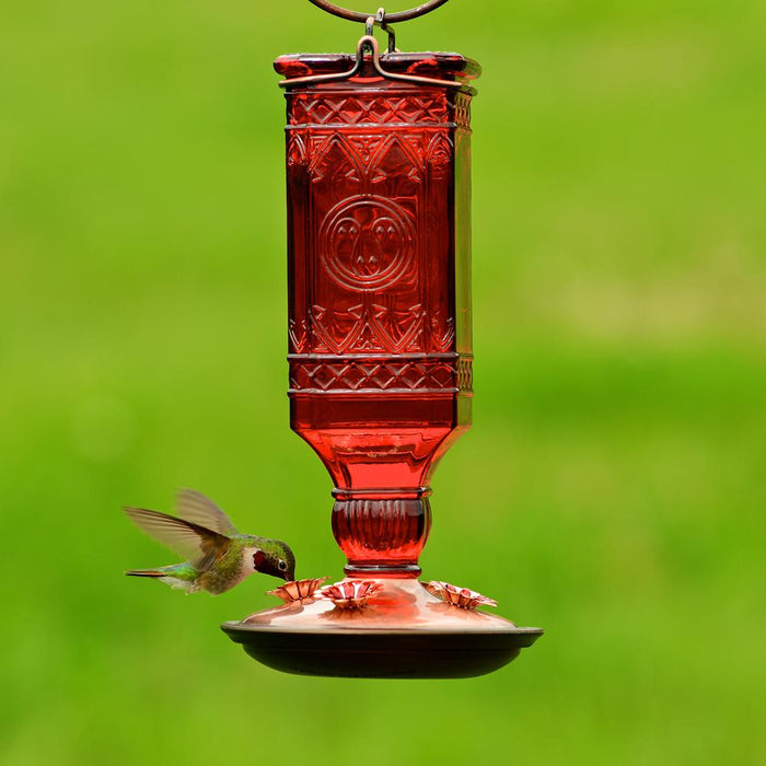 Perky-Pet 8116-2 Square Antique Bottle Glass Hummingbird Feeder, Antique Red