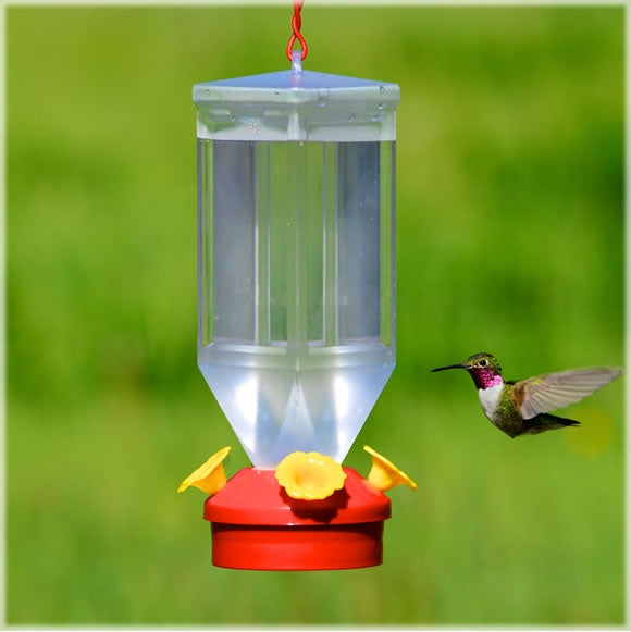 buy bird & squirrel items at cheap rate in bulk. wholesale & retail birds, cats & dogs supplies store.