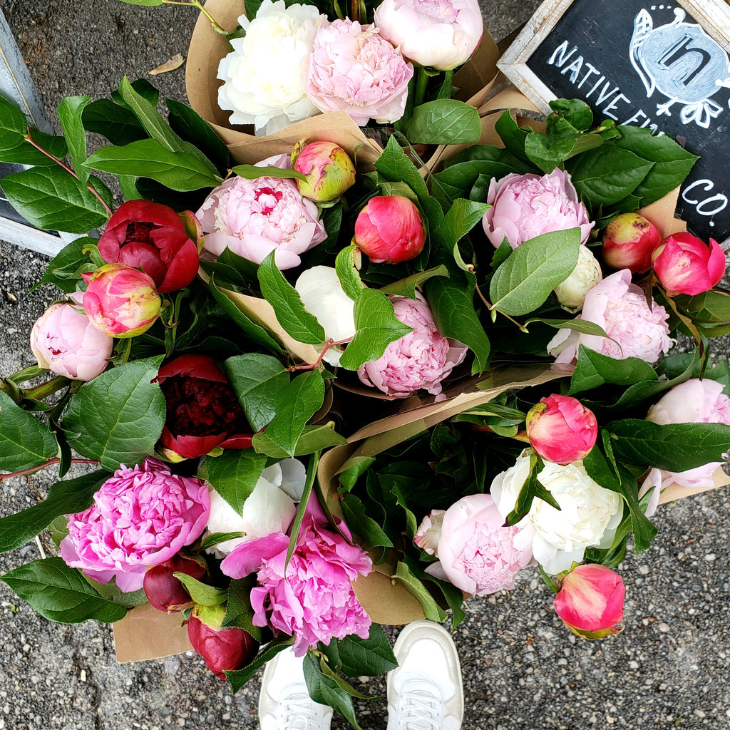 Peony Bundle Subscription