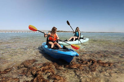 5 Reasons Why Kayaking is the Most Inclusive Paddlesport