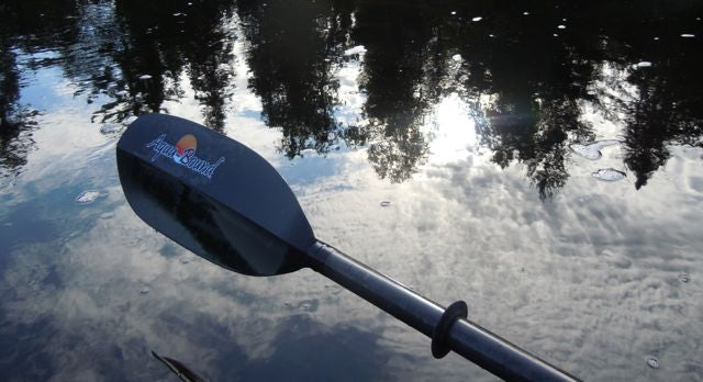 Laurie Chandler's Aqua-Bound paddle