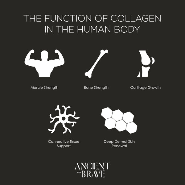 Benefits of collagen powders in the human body