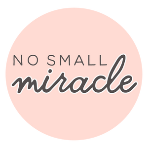 no small miracle children's boutique