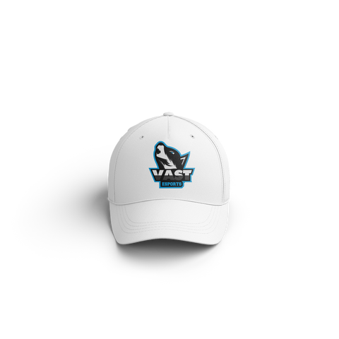 Vast Dad Hat