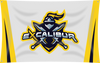 eXcalibur Team Banner