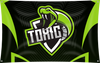 Toxic Team Banner