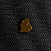 Michigan Mitten Pin