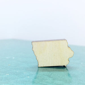 Iowa Lapel Pin