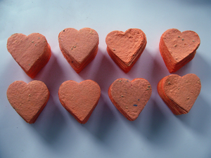 Coral Heart Favor - Coral Wedding Favor - Seed Paper Shower Favor