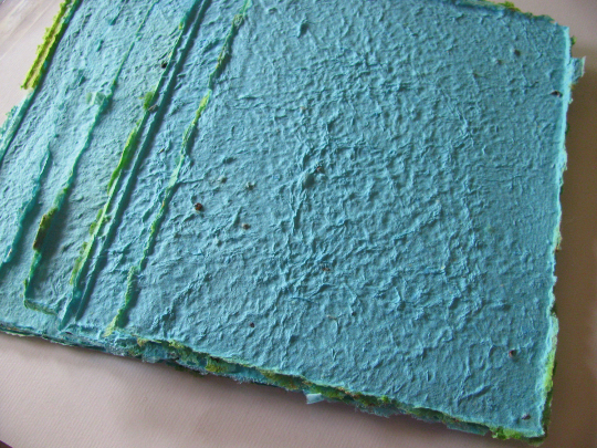 turquoise plantable seed paper