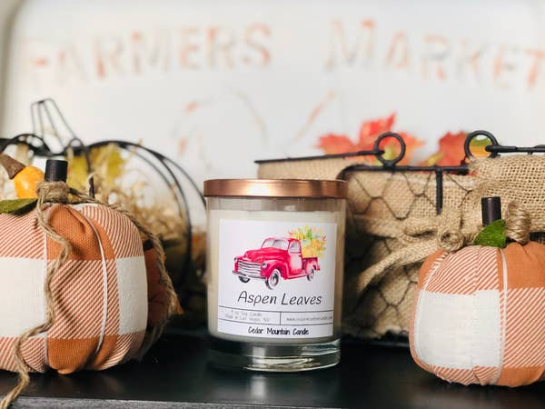Blueberry Pumpkin Fall Pickup Candle