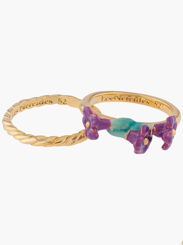 Summer Scents Set of 2 Rings Lavanda Plaits - Multi