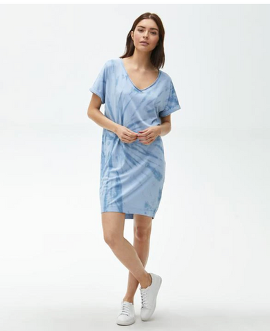 CARA V-NECK GEE DRESS