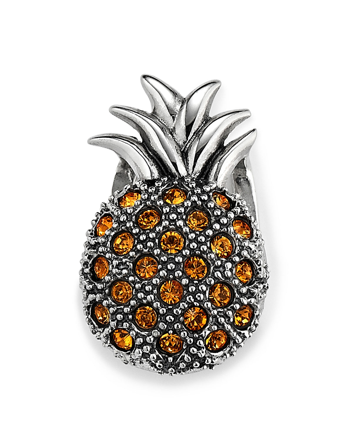 Pineapple Princess Slide Charm