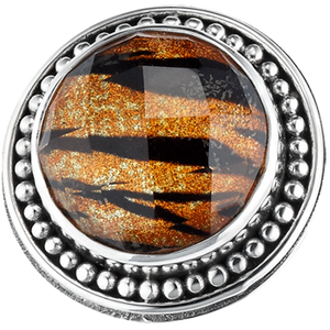 """Eye of the Tiger"" slide charm from Bonn Bons by Lori Bonn (212148QTO)"