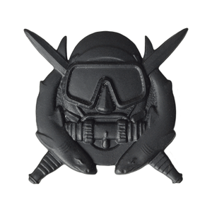 Subdued Skill Badge - Pin-On- Black Metal