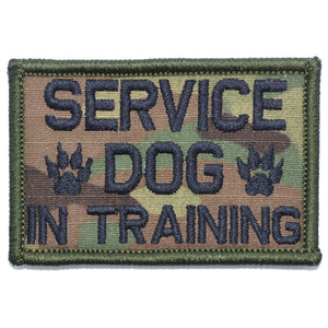 Service Dog In Training - 2x3 Patch