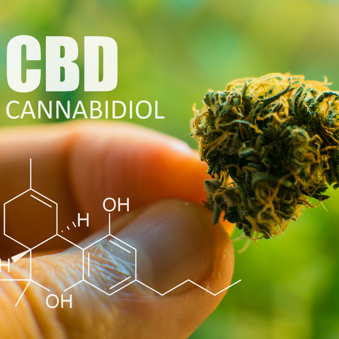 Tips and Advice for Using CBD for Your Pain