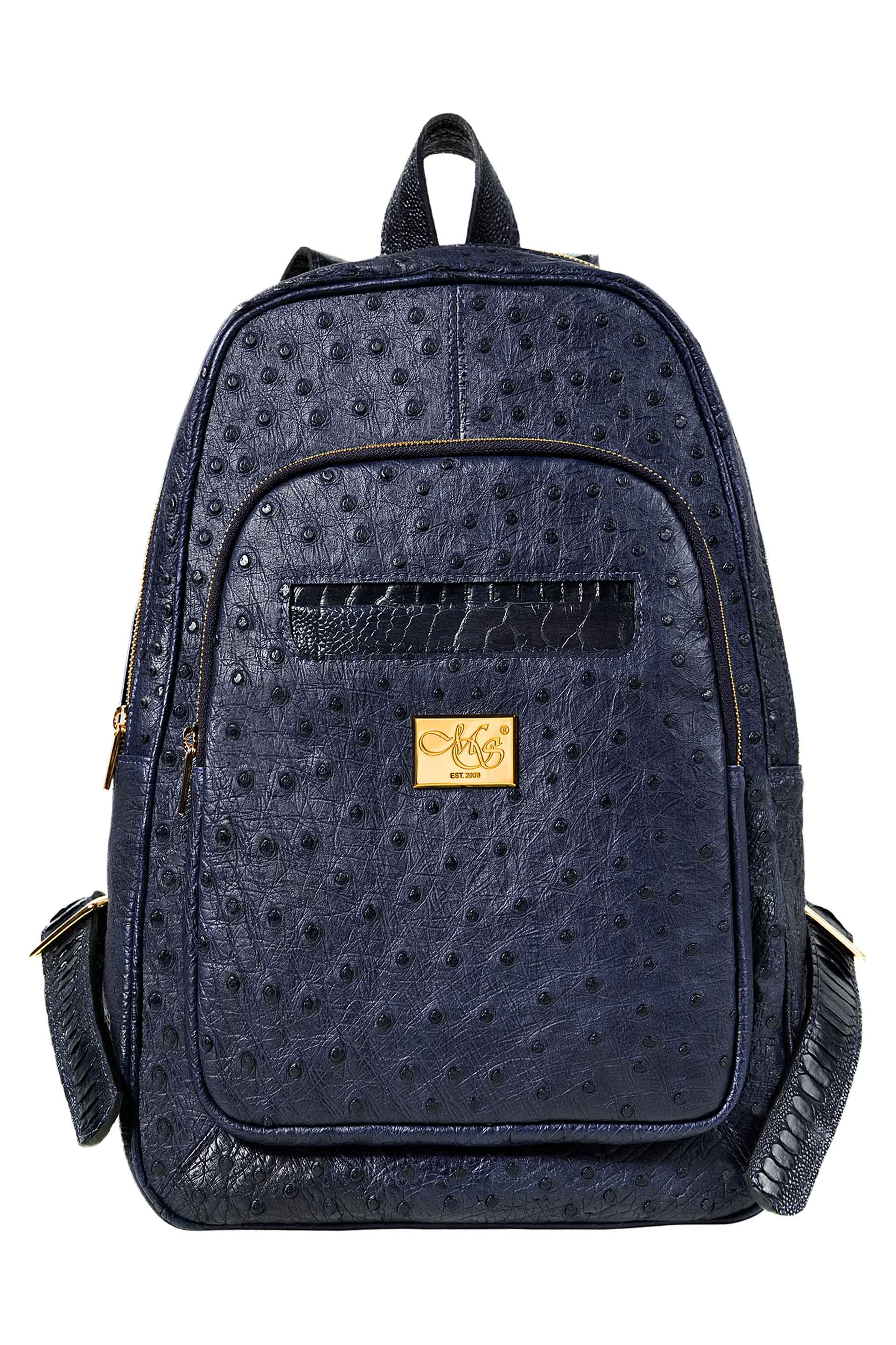 Transporter Blue Ostrich Backpack