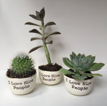 Small succulent pots from I Love Nice People!