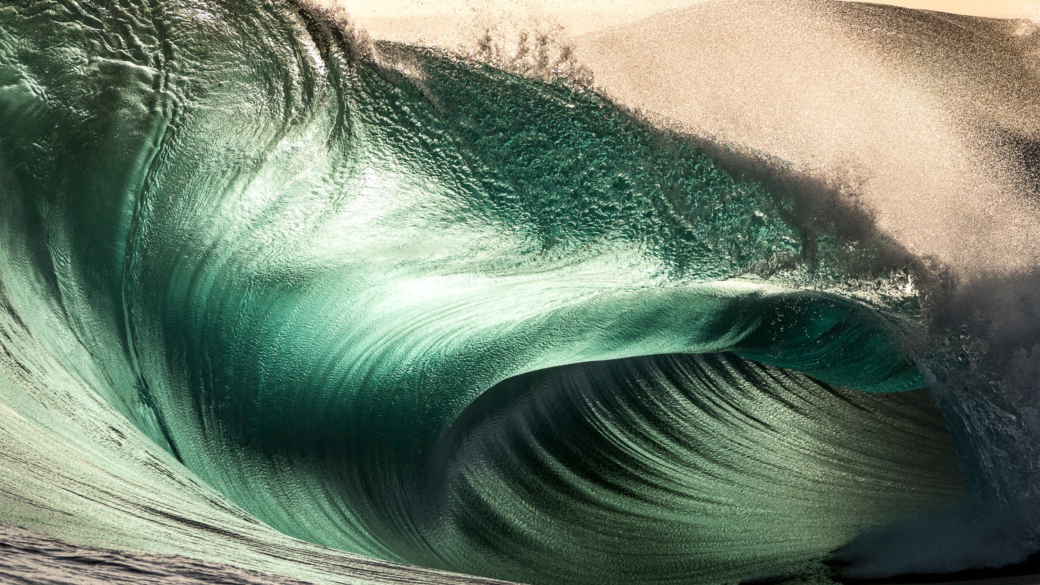 What To Expect At The Upcoming Bluey's Experience With Warren Keelan & Russell Ord