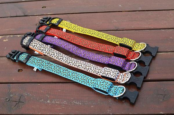 Luminous LED Pet Collar