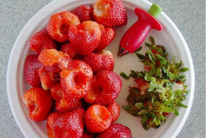Strawberry and Tomato Huller