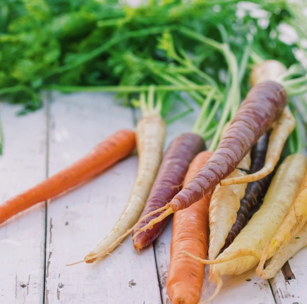 Reduce food waste - eat your carrot greens