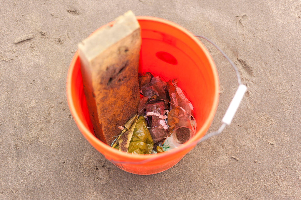 Coastal Clean Up Day 2019 Waste Examples