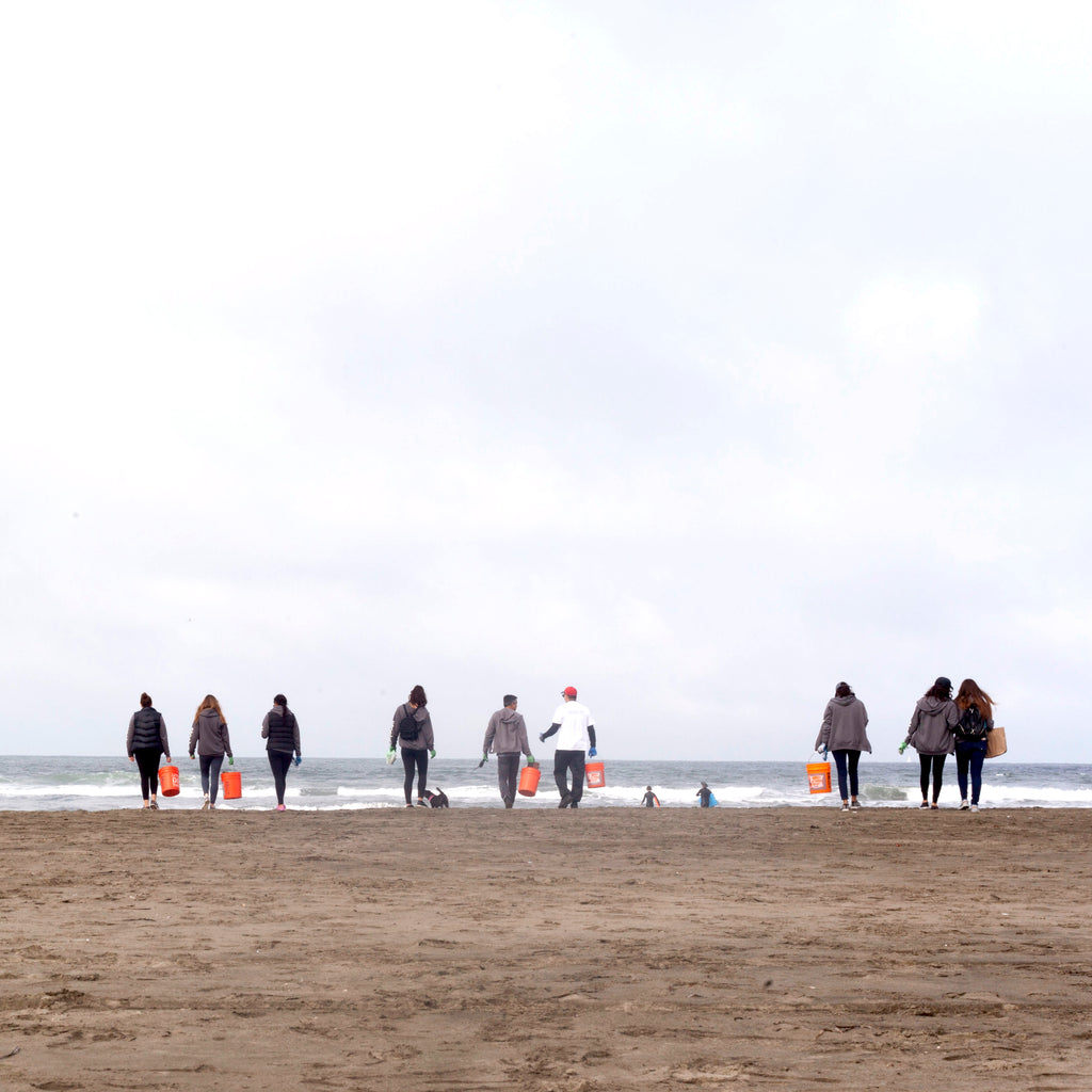 coastal clean up day 2019