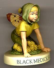 Black Medick Fairy Boy with Base 88915 (boxed) (RETIRED but in)