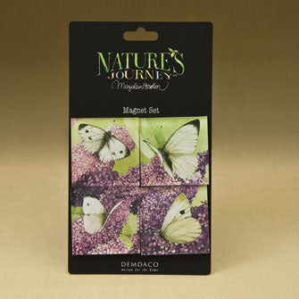 Butterfly Magnets - Set of 4 Assorted 16696