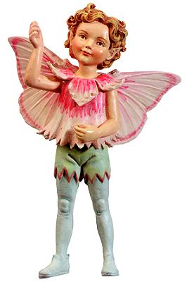 Pink Fairy Boy 86986 (boxed) (RETIRED but in stock)
